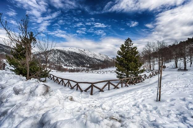 Schneebedeckte landschaftsfahrstraße mit dem hölzernen fechten und den grünen tannen