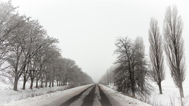 Schneebedeckte leere asphaltstraße mit raureifbäumen auf beiden seiten hintergrund