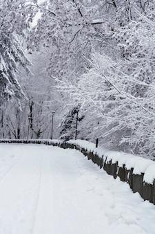 Schneebedeckte straße durch winterwald