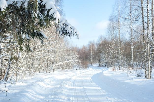 Schneebedeckte straße. schneewald am nachmittag