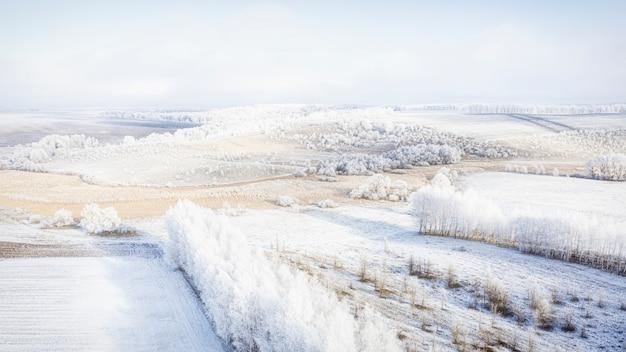 Schneebedeckte wiese mit waldstreifen und leeren agrarfeldern. winterlandschaft.