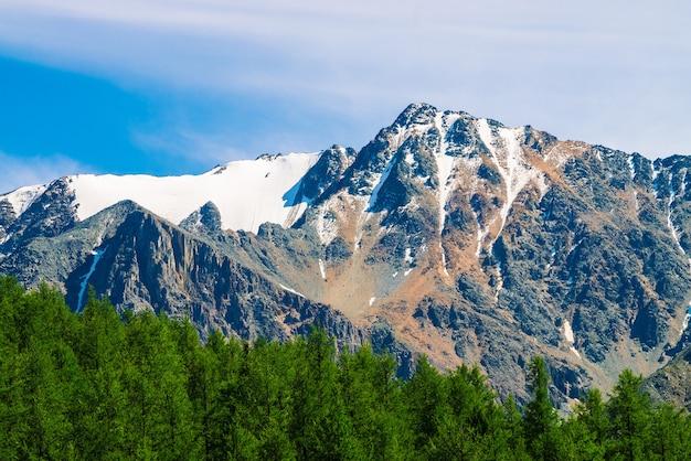 Schneebedeckter berggipfel hinter bewaldetem hügel unter blauem klarem himmel. felskamm über nadelwald. atmosphärische minimalistische landschaft majestätischer natur.