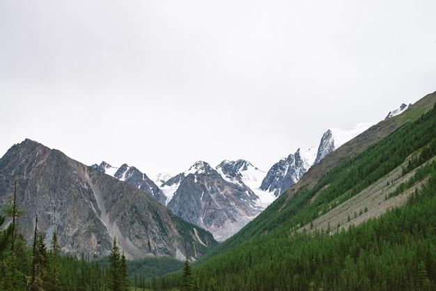 Schneebedeckter berggipfel hinter hügel mit wald unter bewölktem himmel. felskamm bei bewölktem wetter.