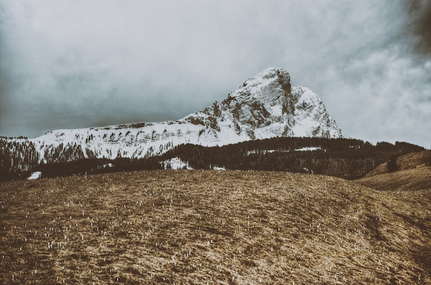 Schneegefüllter berg