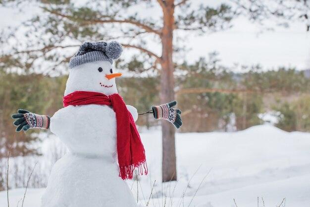 Schneemann im roten schal im wald