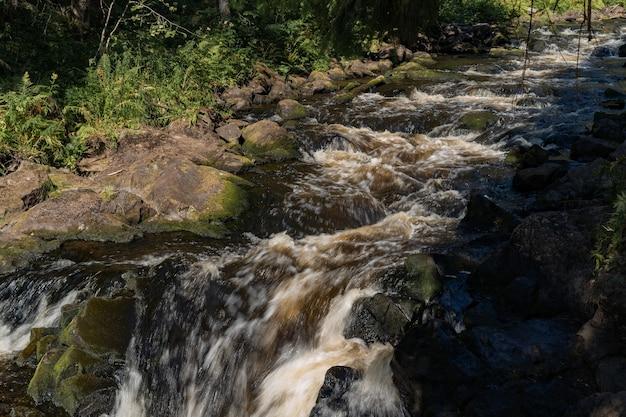 Schneller kleiner gebirgsfluss mit wasserfall im wald