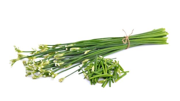 Schnittlauchblume oder chinesischer schnittlauch auf weiß
