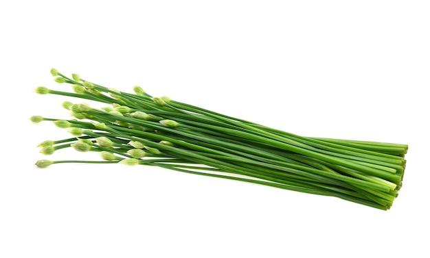 Schnittlauchblume oder chinesischer schnittlauch auf weißem hintergrund