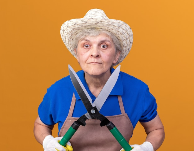 Schockierter älterer weiblicher gärtner, der gartenhut und handschuhe trägt, die gartenschere auf orange halten