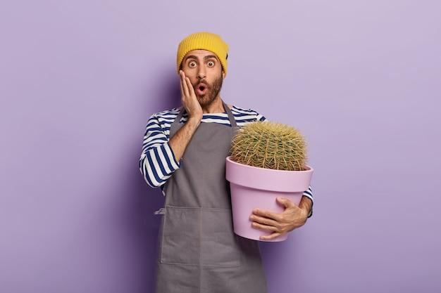 Schockierter betäubter unrasierter männlicher gärtner hält hand auf wange, trägt freizeithut, graue schürze