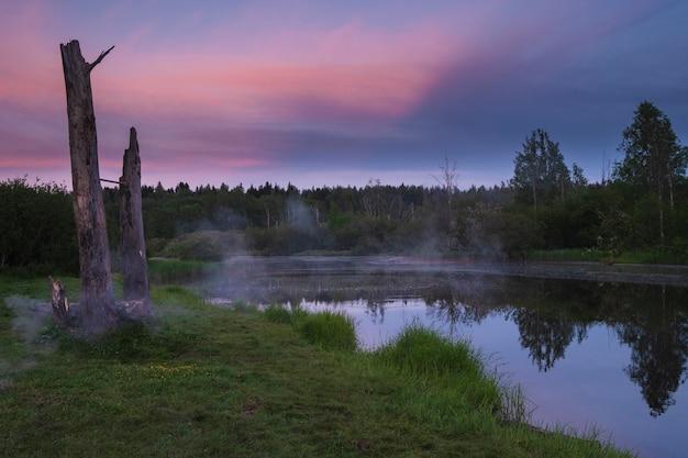 Schöne abendlandschaft, sonnenuntergang in einem waldpark auf dem see im sommer