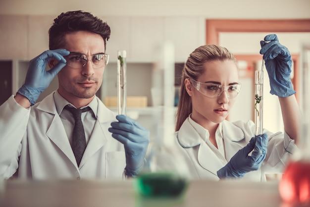 Schöne ärztin im labor