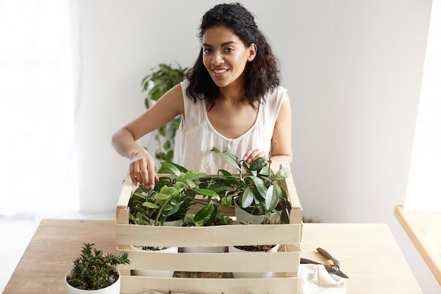 Schöne afrikanische frau lächelnd, die pflanzen im kasten am arbeitsplatz kümmert. speicherplatz kopieren.