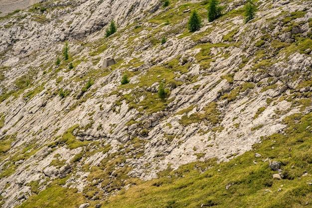 Schöne alpen mit grünem moos bedeckten felsigen berg