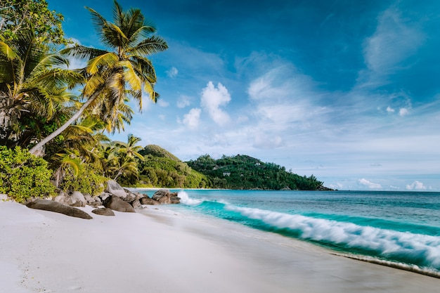 Schöne anse intentionance, tropischer strand. ozeanwellenrolle auf sandstrand mit kokospalmen. mahe, seychellen.