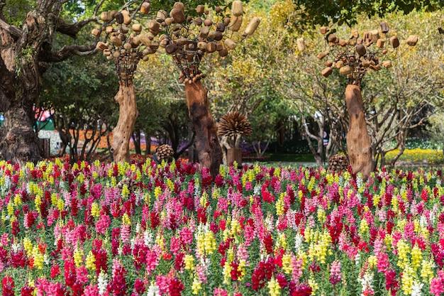 Schöne antirrhinum majus oder löwenmaulblumen blühen im garten
