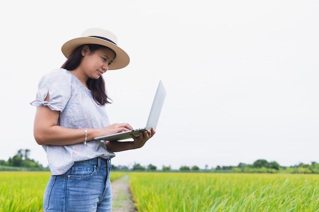 Schöne asiatische frauen, die auf dem reisgebiet stehen und unter verwendung eines laptops arbeiten, der zufällige kleidung trägt.