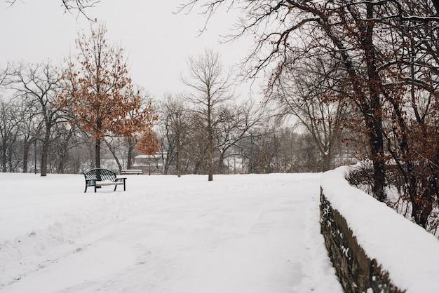 Schöne aufnahme des mit schnee bedeckten parks an einem kalten wintertag