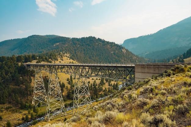 Schöne aufnahme des yellowstone-nationalparks in den usa