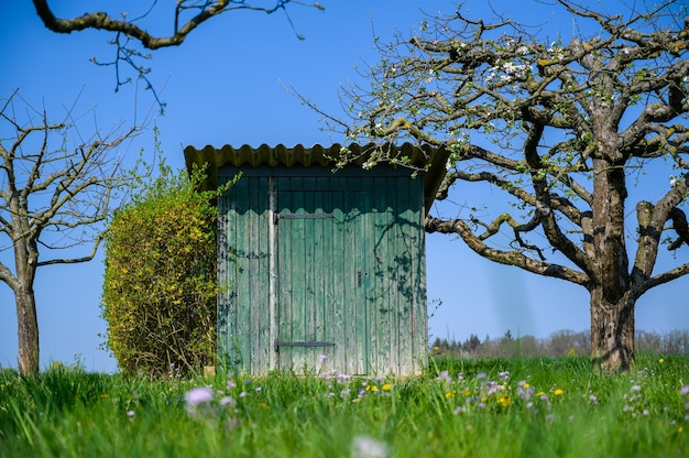 Schöne aufnahme einer außentoilette, umgeben von erstaunlichen bäumen und einer grünen wiese