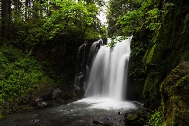 Schöne aufnahme eines erstaunlichen wasserfalls in einer waldlandschaft