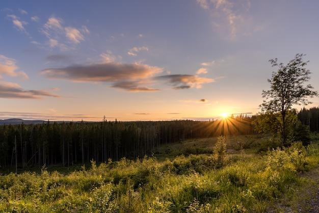Schöne aufnahme eines sees mit umgeben von bäumen bei sonnenuntergang