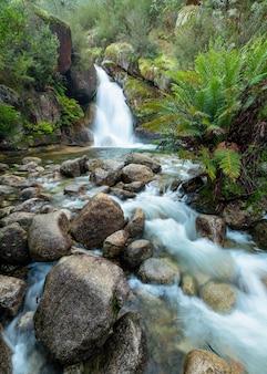 Schöne aufnahme eines wasserfalls, der in der nähe vieler felsen fließt
