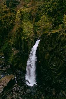 Schöne aufnahme eines wasserfalls in einem wald, umgeben von grün
