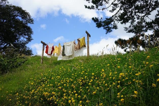 Schöne aufnahme von frisch gewaschenen kleidern, die im garten unter einem blauen himmel getrocknet werden