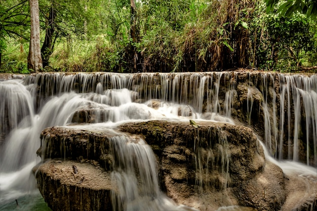 Schöne aufnahme von wasserfällen im wald