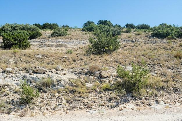 Schöne aufnahme von west texas landschaft mit einem klaren blauen himmel