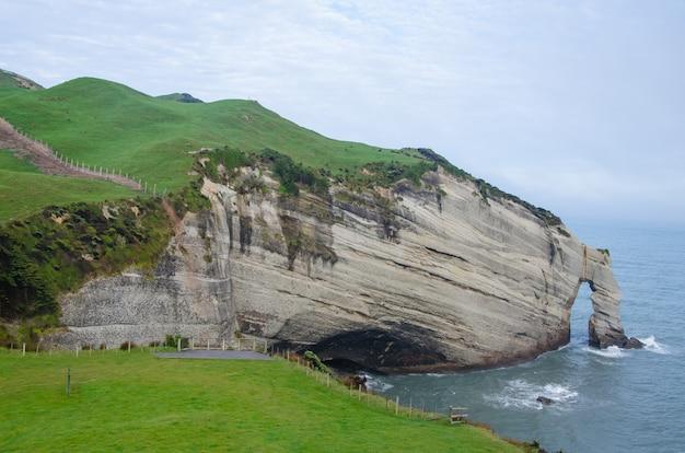 Schöne aufnahme von wharakiki beach, neuseeland