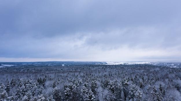 Schöne aussicht auf den endlosen winterwald vogelblick