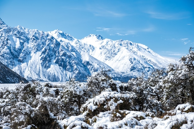 Schöne aussicht auf den mount cook national park, der nach einem verschneiten tag mit schnee bedeckt ist.