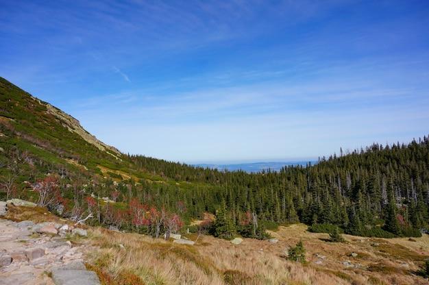 Schöne aussicht auf die bäume auf den hügeln, die in den herrlichen karkonosze bergen, polen gefangen genommen werden