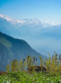 Schöne aussicht auf die berge an einem sonnigen tag