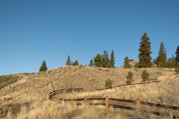 Schöne aussicht auf die grünen bäume hinter dem holzzaun auf den feldern voller getrocknetem gras