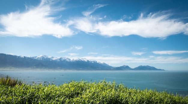 Schöne aussicht auf die küste mit grünen pflanzen im vordergrund azurblauen ozean im mittleren boden kaikoura