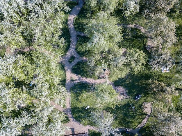 Schöne aussicht auf einen grünen park mit blühenden bäumen und wanderwegen an einem sonnigen frühlingstag. kiev, ukraine. drohnenfoto