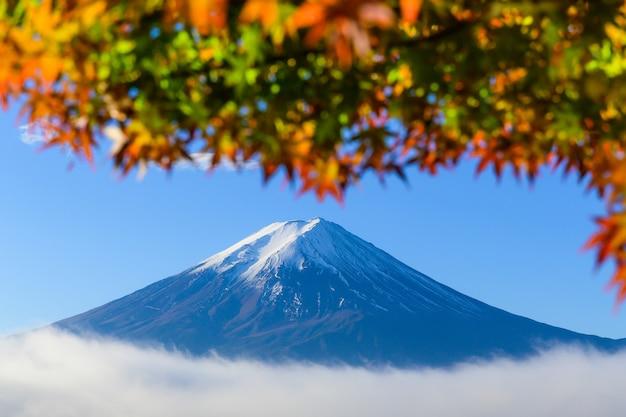 Schöne aussicht auf fuji san berg mit bunten roten ahornblättern und wintermorgennebel in der herbstsaison am see kawaguchiko, besten orten in japan, reise- und landschaftsnaturkonzept