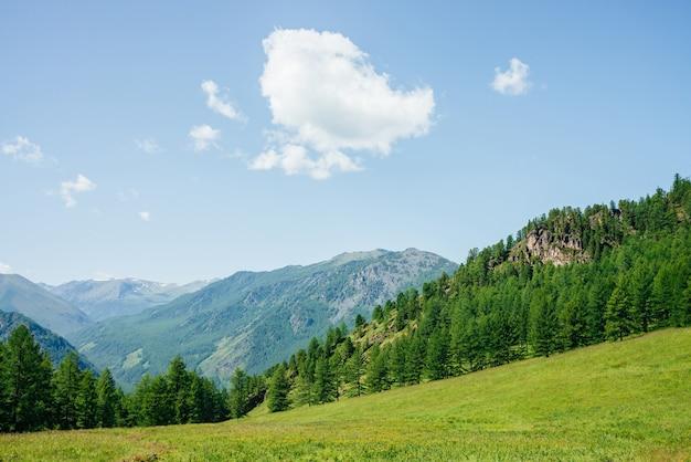 Schöne aussicht auf grünen waldhügel mit felsen und gebirgszug fantastische minimalistische alpine landschaft