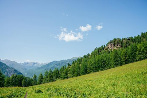 Schöne aussicht auf grünen waldhügel mit felsen und großer bergkette.