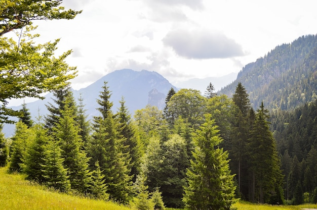 Schöne aussicht auf hohe berge in deutschland