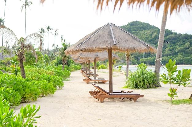 Schöne aussichtslandschaft von liegestühlen auf tropischem strand, dem smaragdgrünen meer und dem weißen sand gegen blauen himmel, maya-bucht in der phi-phi-insel, thailand