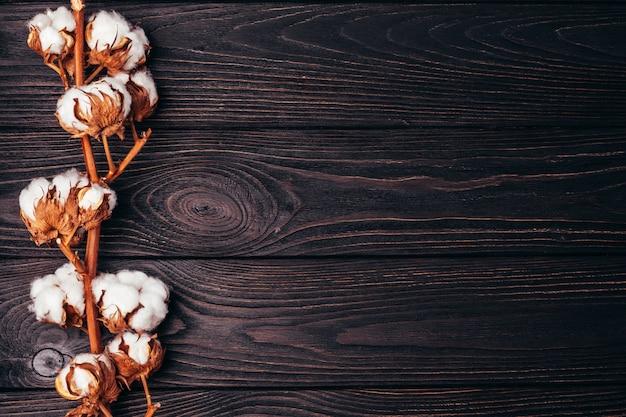 Schöne baumwolle auf einer hölzernen dunklen tabelle