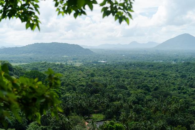 Schöne berge in zentralem sri lanka