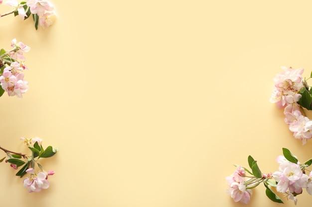 Schöne blühende zweige auf farbigem hintergrund