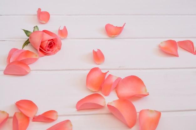 Schöne blütenblätter einer lachsfarbe über einem weißen holztisch angeordnet