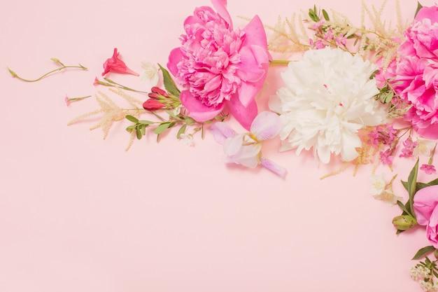 Schöne blumen auf rosa papieroberfläche
