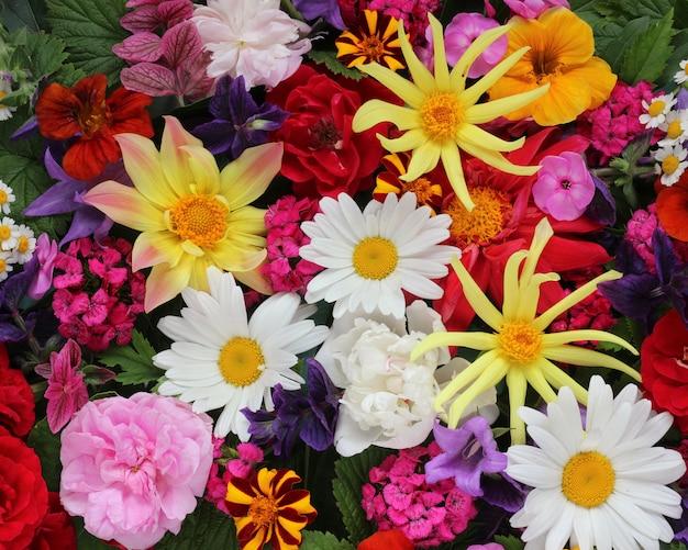 Schöne blumendraufsicht mit verschiedenen gartenblumen.